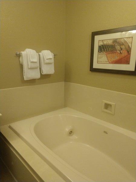Nashville Wyndham Resort, vacation rental in Nashville