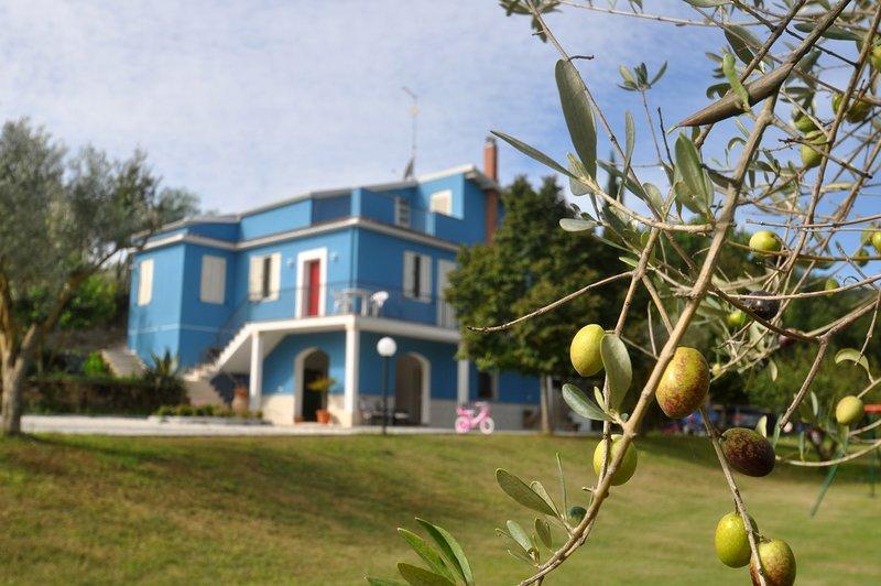 La Casa Blu tra Piazza Armerina e Caltagirone, vacation rental in Aidone
