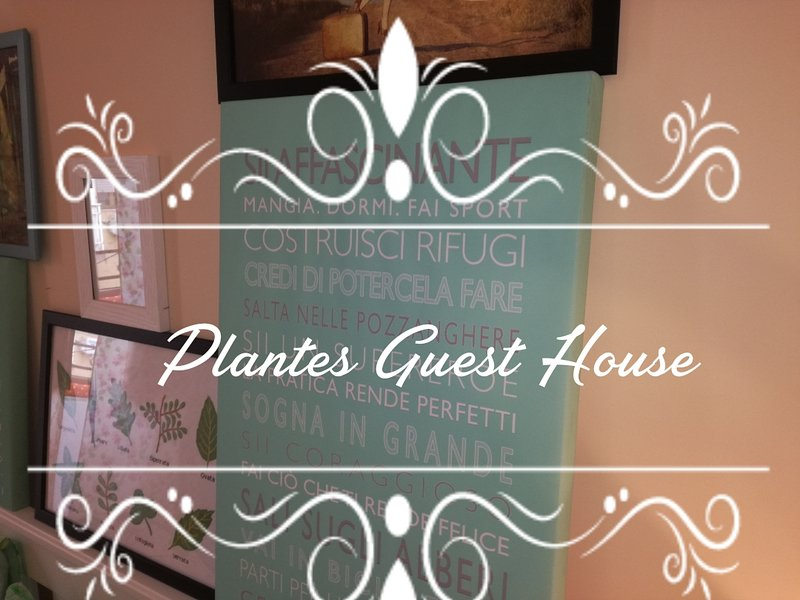 Plantes House, holiday rental in Volla