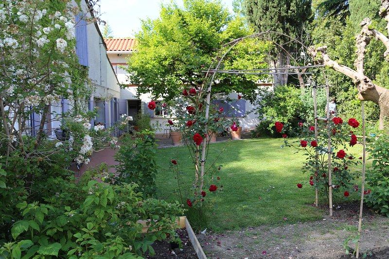 ' Les Esquirols' studio Violette, vacation rental in Toulouse