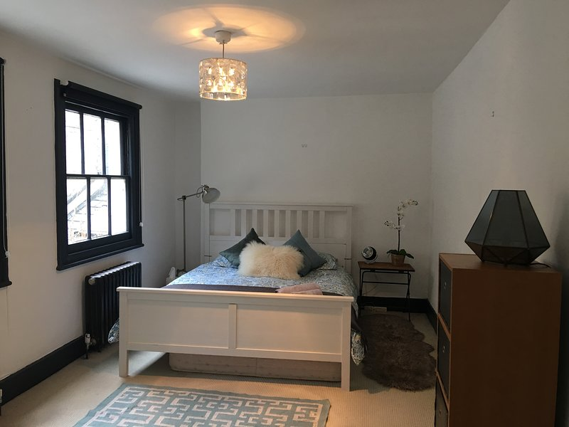 Beautiful light filled apartment in fabulous location, holiday rental in Haringey