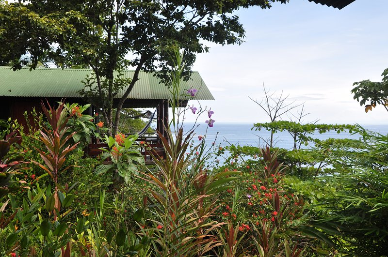 Ocean View Bungalow-Osa Great Adventure, vacation rental in Corcovado National Park