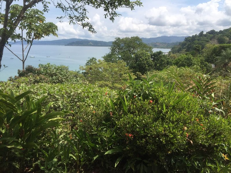 Rustic bungalow wit ocean view-Osa Great Adventure, vacation rental in Corcovado National Park