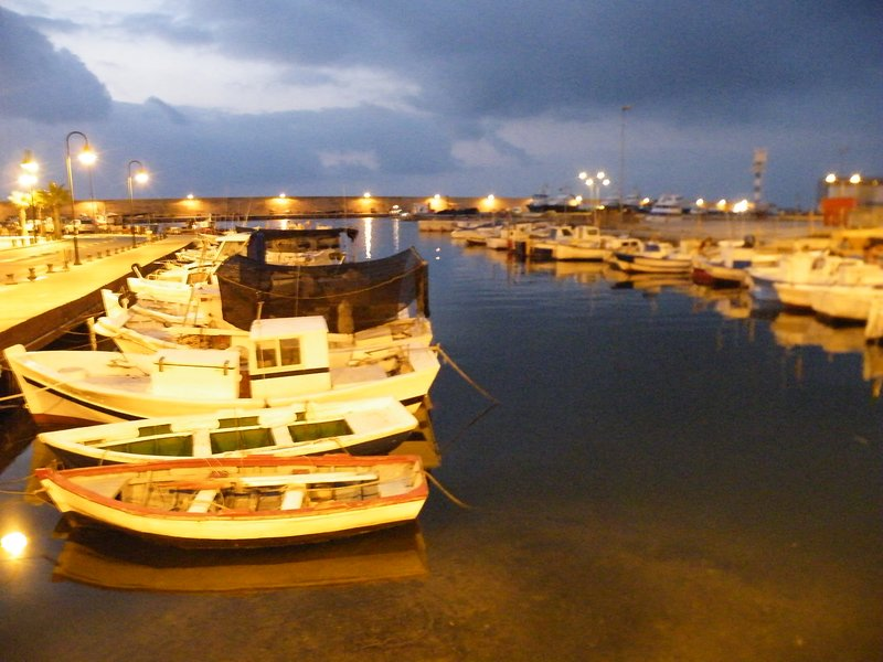 The L'Ametlla Port by night