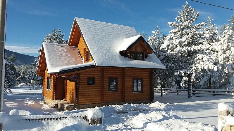 Apartment Plitvice forest, vacation rental in Vrelo Korenicko