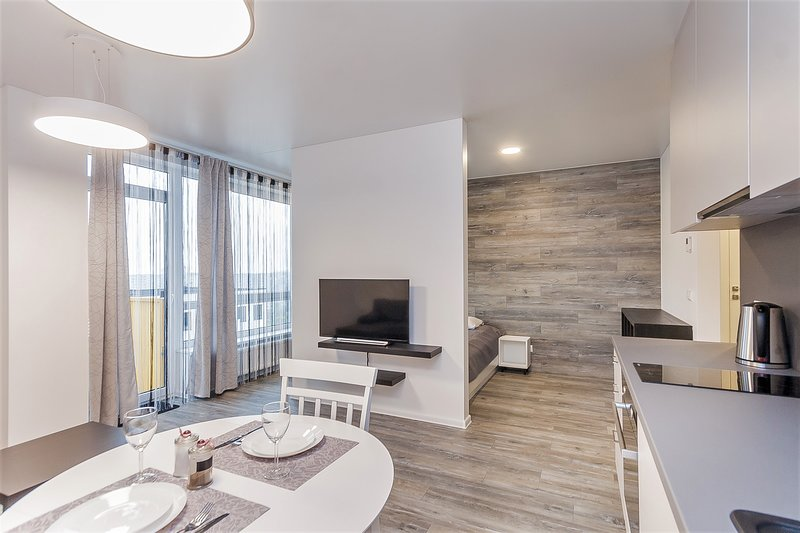 Apartments Vilnius 1 near center with a roof terrace and parking, holiday rental in Paberze