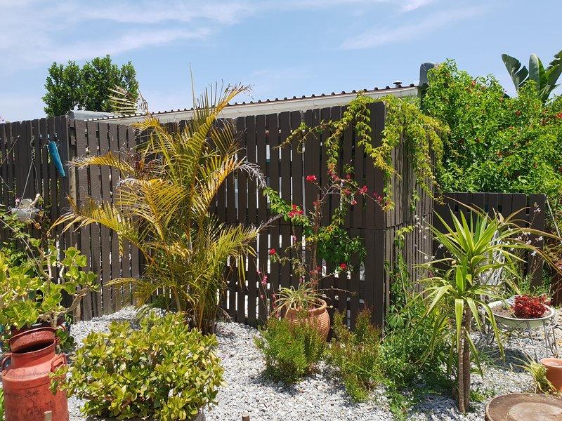 tropical garden surrounds
