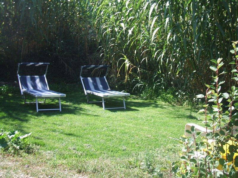 solarium area in the garden