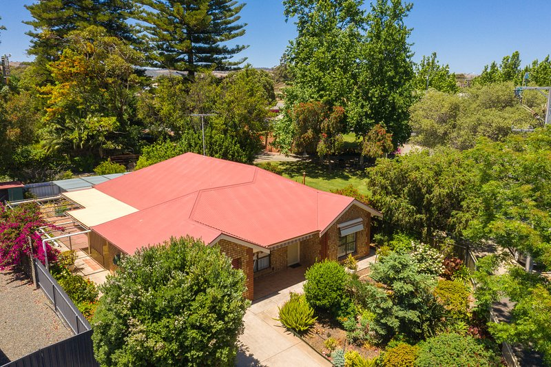 Leafy Magpie House está rodeada de jardines, justo en el centro del municipio de Tanunda.
