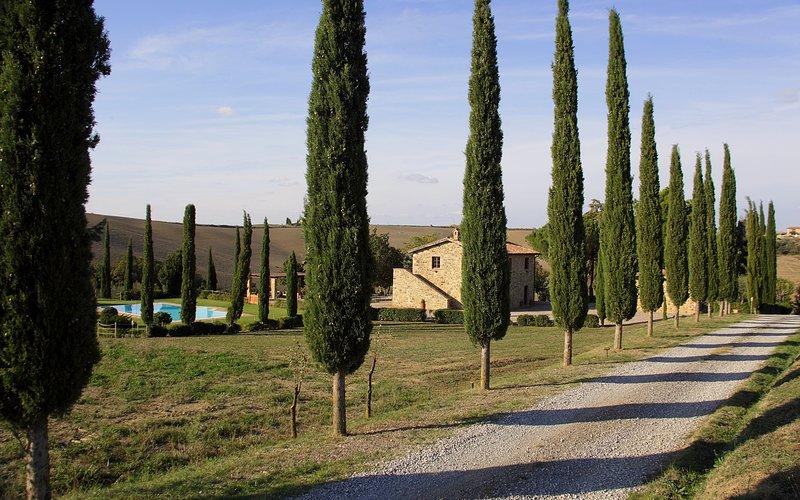 La Tana del Bianconiglio - App. Girasole, casa vacanza a Castiglione D'Orcia