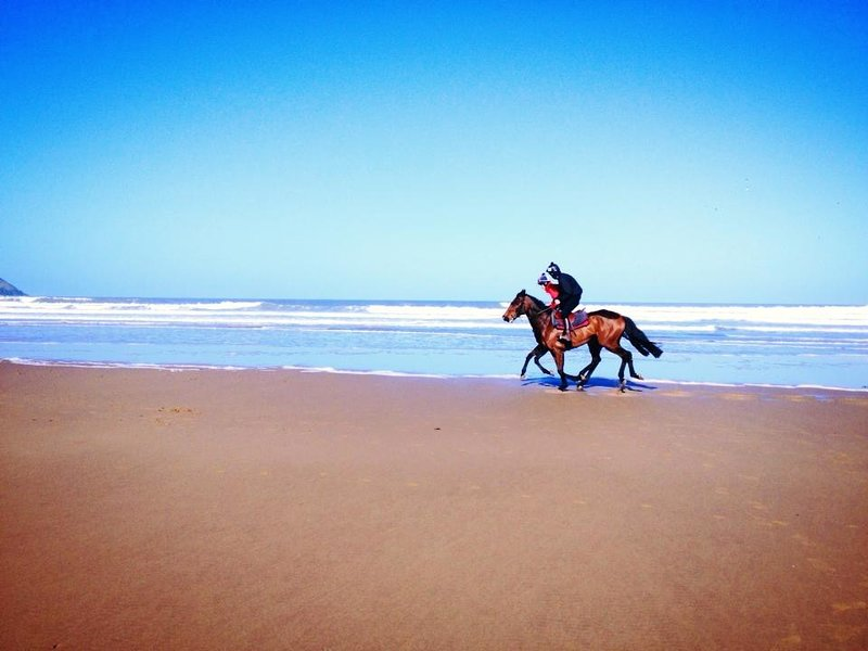 racehorses sometimes ride out along the 3 miles of Woolacombe sand