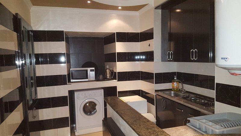1 berdroom apartment in the center of Yerevan, vacation rental in Garni