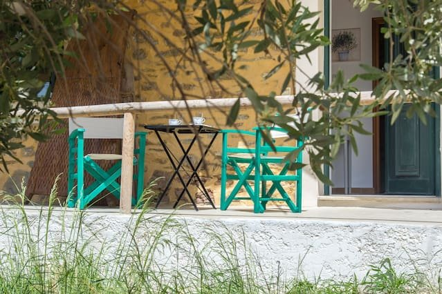 The apartment's patio is hidden in the olive trees