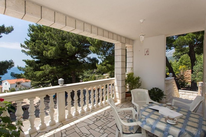 Apartments Villa Dingač-Borak - One-Bedroom Apartment with Balcony and Sea View, vacation rental in Potomje