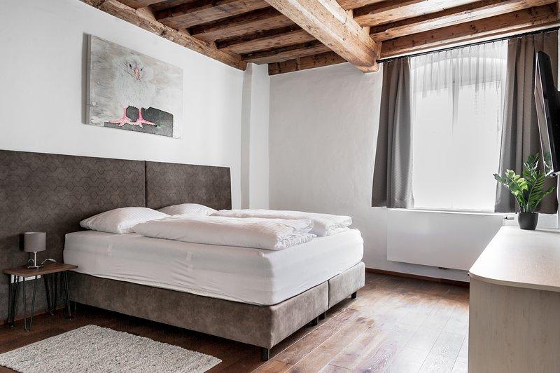 Suite in der Grazer Altstadt - Sporgasse Top 4, alquiler vacacional en Gundersdorf