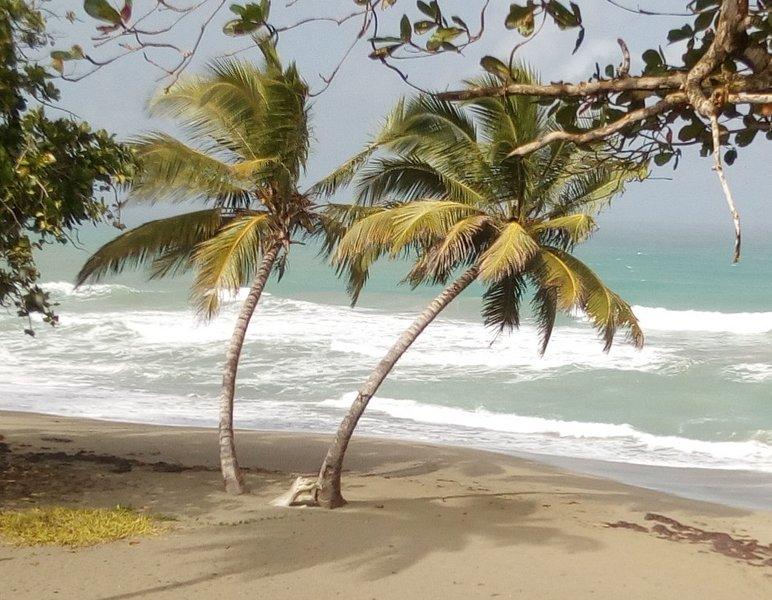 Apartamento La Cana en la Playa,Cerca de Cabarete, location de vacances à Gaspar Hernandez