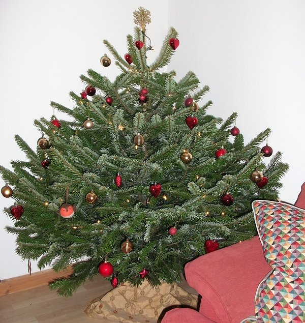 Christmas tree and decorations ready for you when you arrive at Christmas!