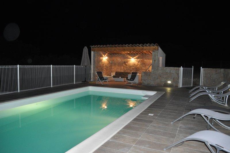 heated pool 4 * 8 with pool house