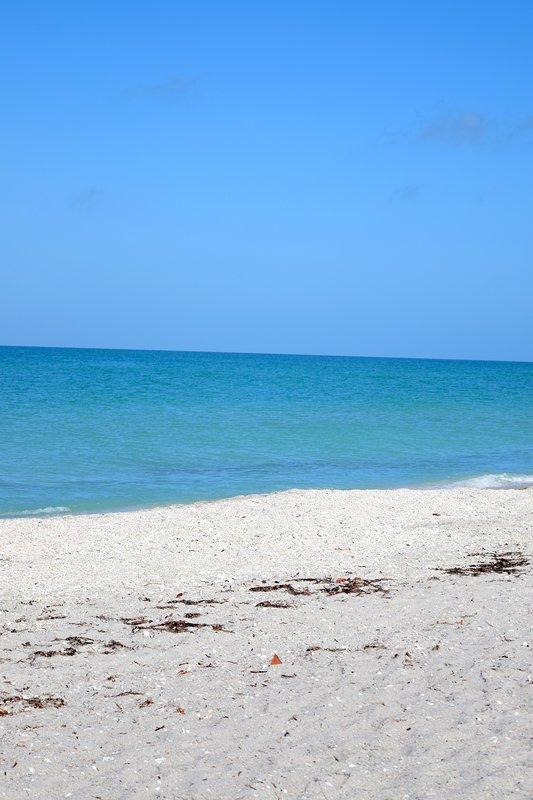 La playa de Englewood está a solo unos minutos.