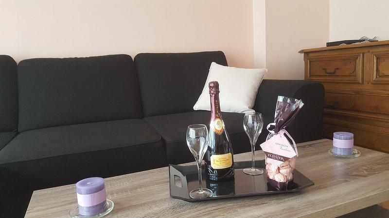 Au coeur du champagne, location de vacances à Vinay