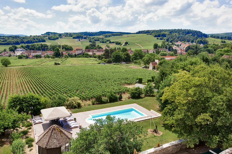 Mercurey Chateau Sleeps 16 with Pool - 5049848, vacation rental in Mellecey
