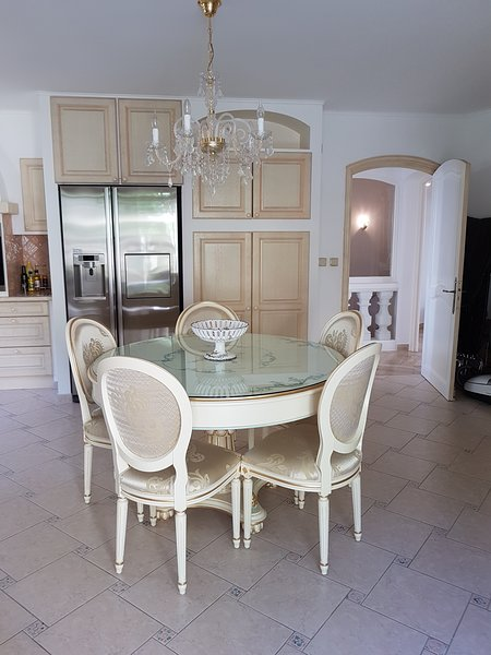 Amazing villa with swimming-pool, vacation rental in Cannes