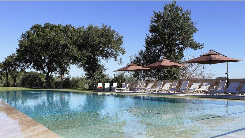 Luxury villa Travertino, holiday rental in Sarteano