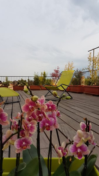 STELLA G  a little gem in the sky, big terrace ,15 minutes from Venice, vacation rental in Zelarino