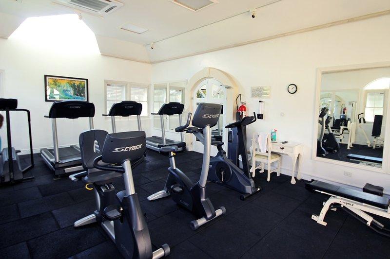 Un gimnasio totalmente equipado con aire acondicionado está disponible para uso de los huéspedes