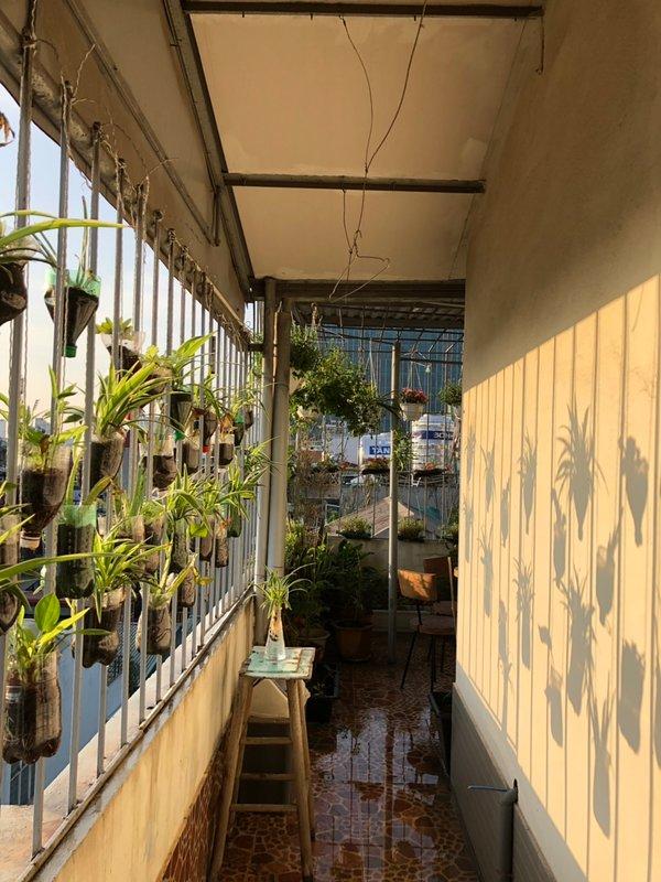 Garden at the 6th floor