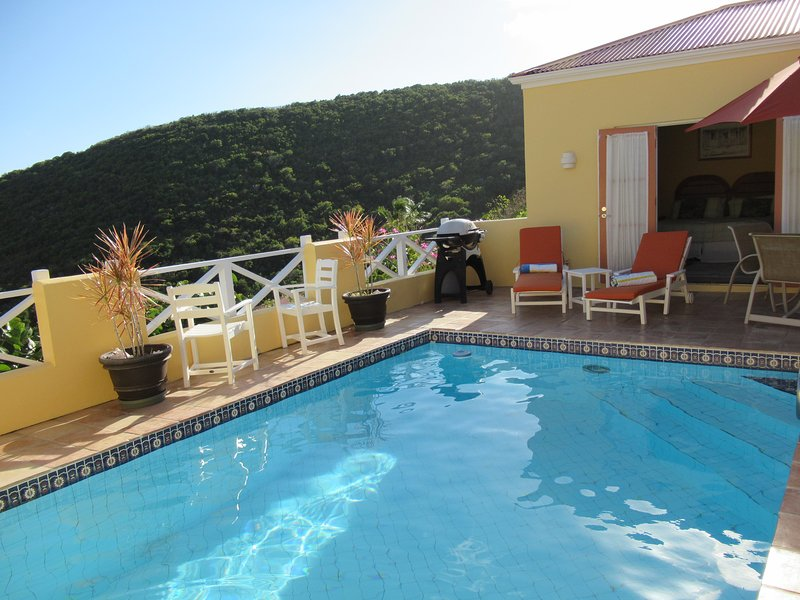 Affordable Villa with Private Pool - Sun Kissed!, vacation rental in Teague Bay