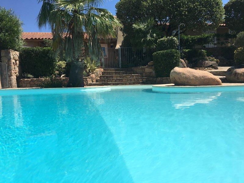 rental villa with pool porto vecchio
