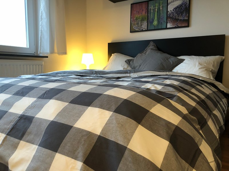 Cozy studio 500m from the train station (wifi&netflix), holiday rental in Esch-sur-Alzette