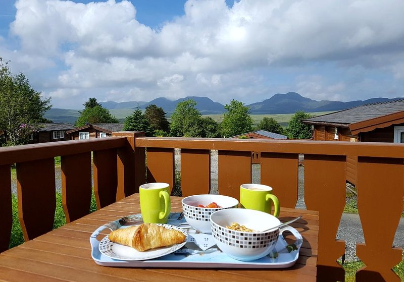 Snowdonia log cabin,clean, cosy, luxurious, mountain views, dog friendly., holiday rental in Bronaber