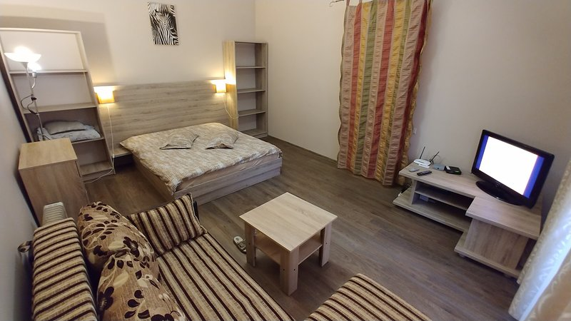 One-room. 5a Baseina St.  Near a Khreschatyk, holiday rental in Kyiv (Kiev)