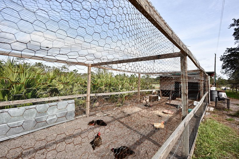 A chicken coop can be found on the farm, in addition to cattle & goats.