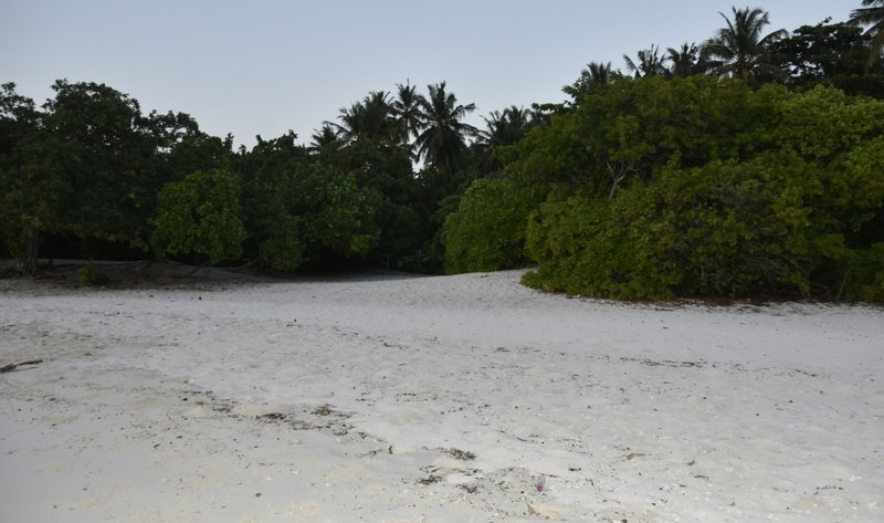 Five Coral Inn (Double Room 5), vacation rental in Milaidhoo Island