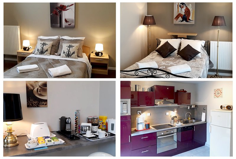 Grand logement familial proche de Paris et Disneyland + WIFI & Breakfast, holiday rental in Chelles