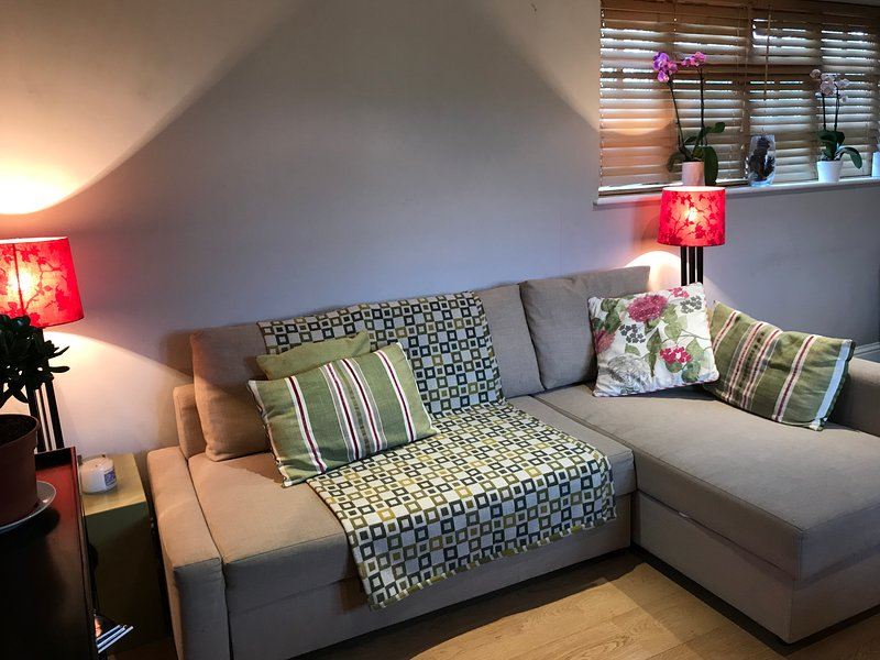 NEW - Windsor spacious converted stable 5 mins Legoland, perfect for families, casa vacanza a Ascot