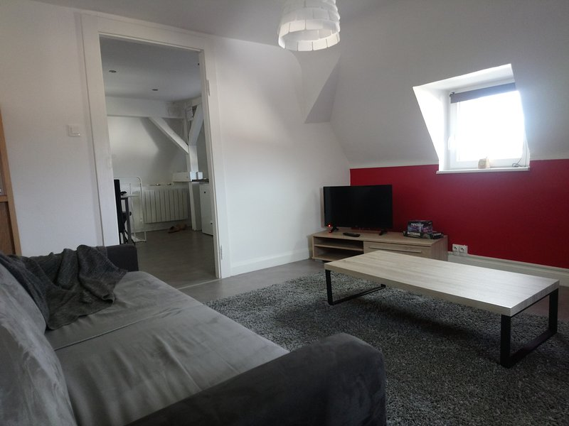Nice apt in Sierck-les-Bains & Wifi, holiday rental in Serrig