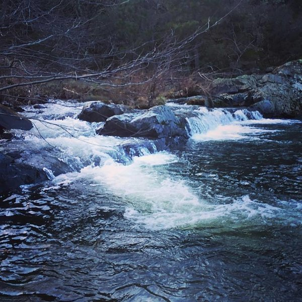 Enjoy Year Round Creek Sights and Sounds, vacation rental in Penn Valley
