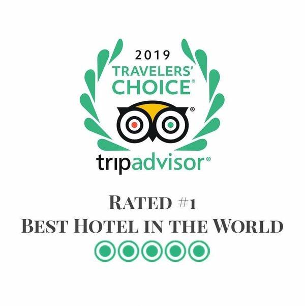 Tulemar: ¡el hotel número 1 en el mundo según TripAdvisor 2019!