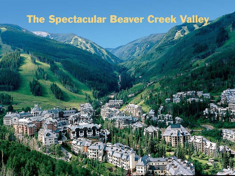 SKI IN/OUT Beaver Creek Lux 2 Bdm  60 5 Star Revws, holiday rental in Beaver Creek