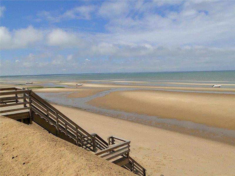 Scale della spiaggia di Thumpertown