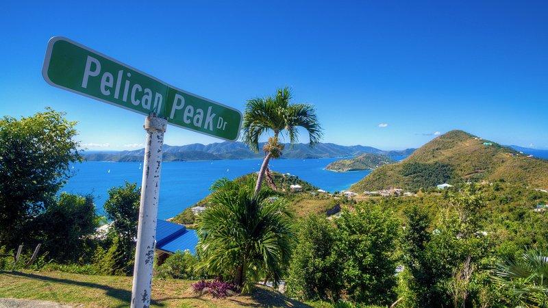 Pelican Peak Villa - Tortola Virgin Islands (GB)