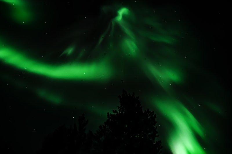 Aurora boreal sobre vidsel