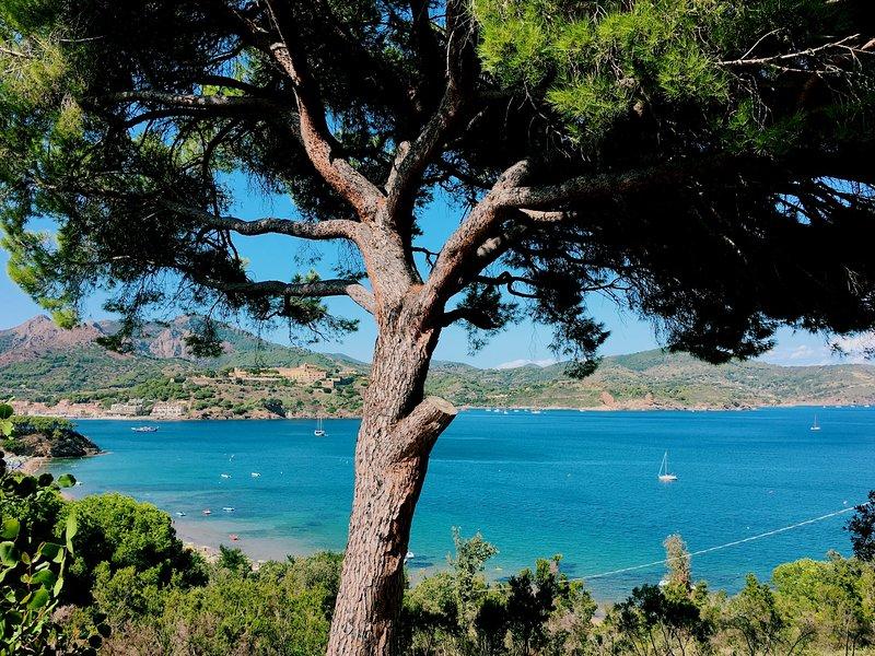 'Casa Anna 3 Apartment' - Capoliveri, Isola d'Elba (a 200 mt dal mare), holiday rental in Naregno