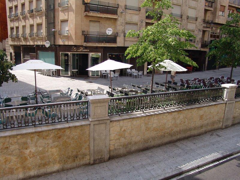 Amplio piso completo en pleno centro de Salamanca, en zona monumental con garaje, holiday rental in Encinas de Abajo