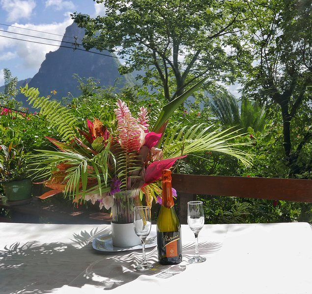 Dinning at the Treehouse always offers you amazing views of the Pitons.