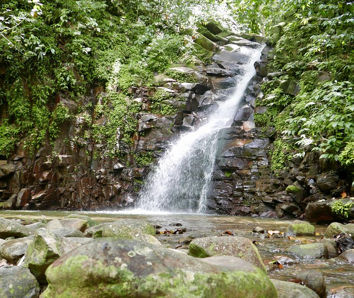 Enjoy all of the activities in the area such as exploring pristine waterfalls in the rainforest.